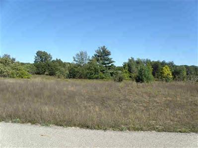 14 Trim Lake View Estates, New Era MI 49446 - Photo 2