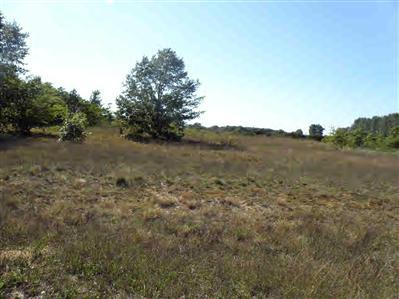 22 Trim Lake View Estates, New Era MI 49446 - Photo 1