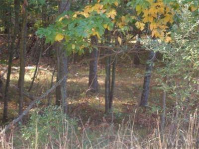 10412 Mountain View Trail #378, Canadian Lakes MI 49346 - Photo 2