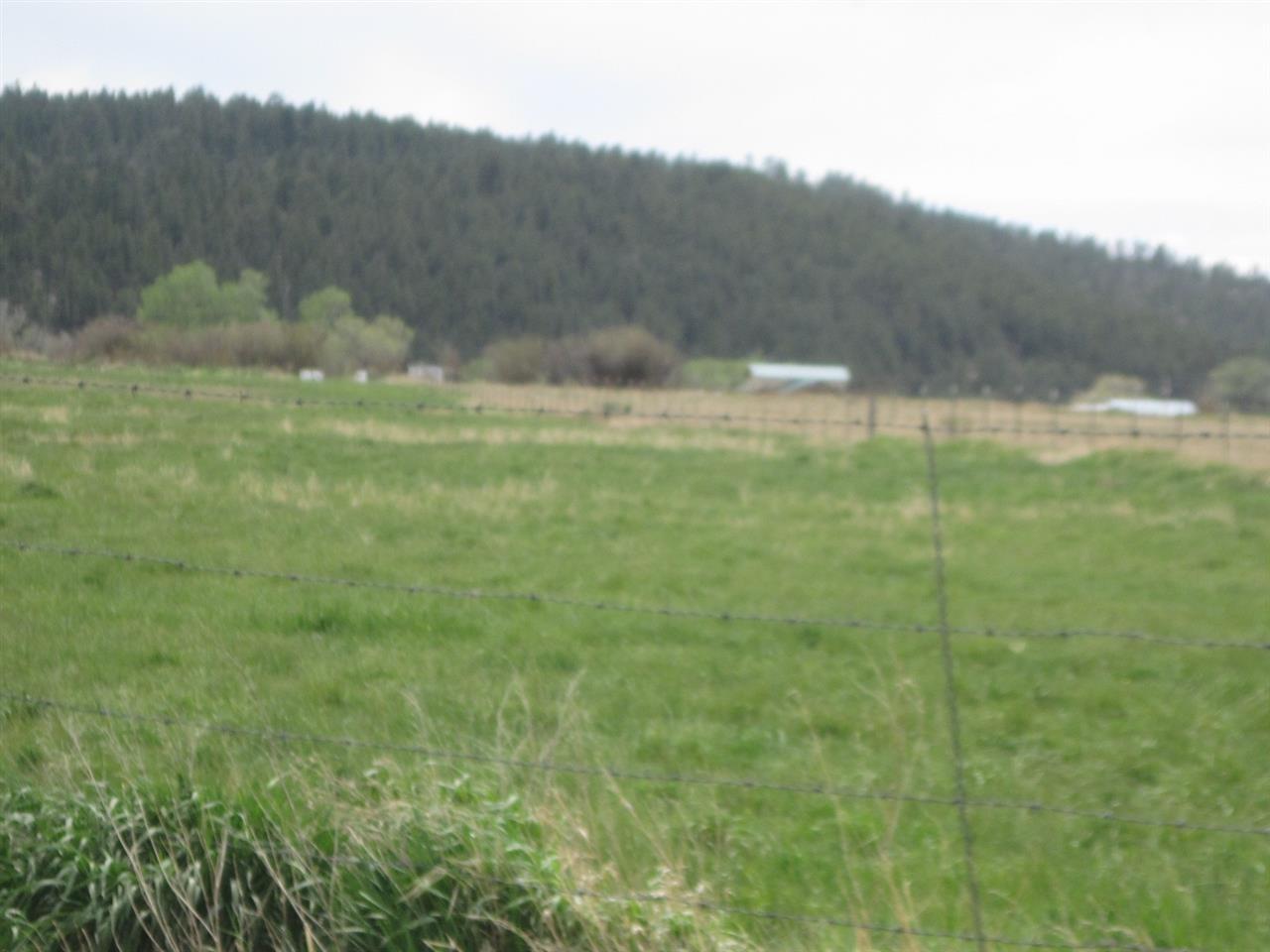 Highway 84 Private Drive, Tierra Amarilla NM 87575 - Photo 2
