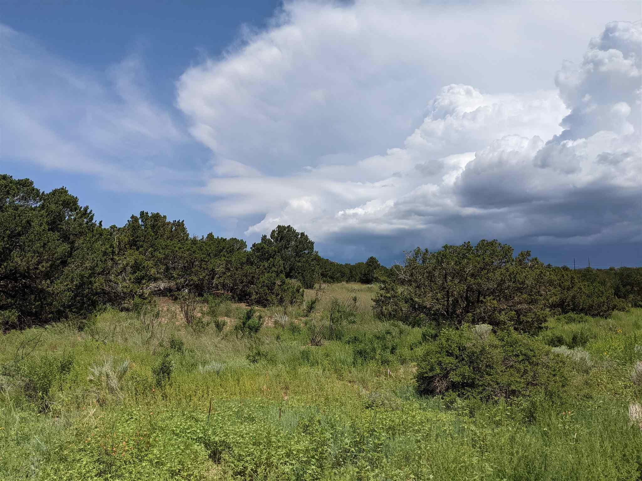 12 Camino Valle, Lamy NM 87508 - Photo 1