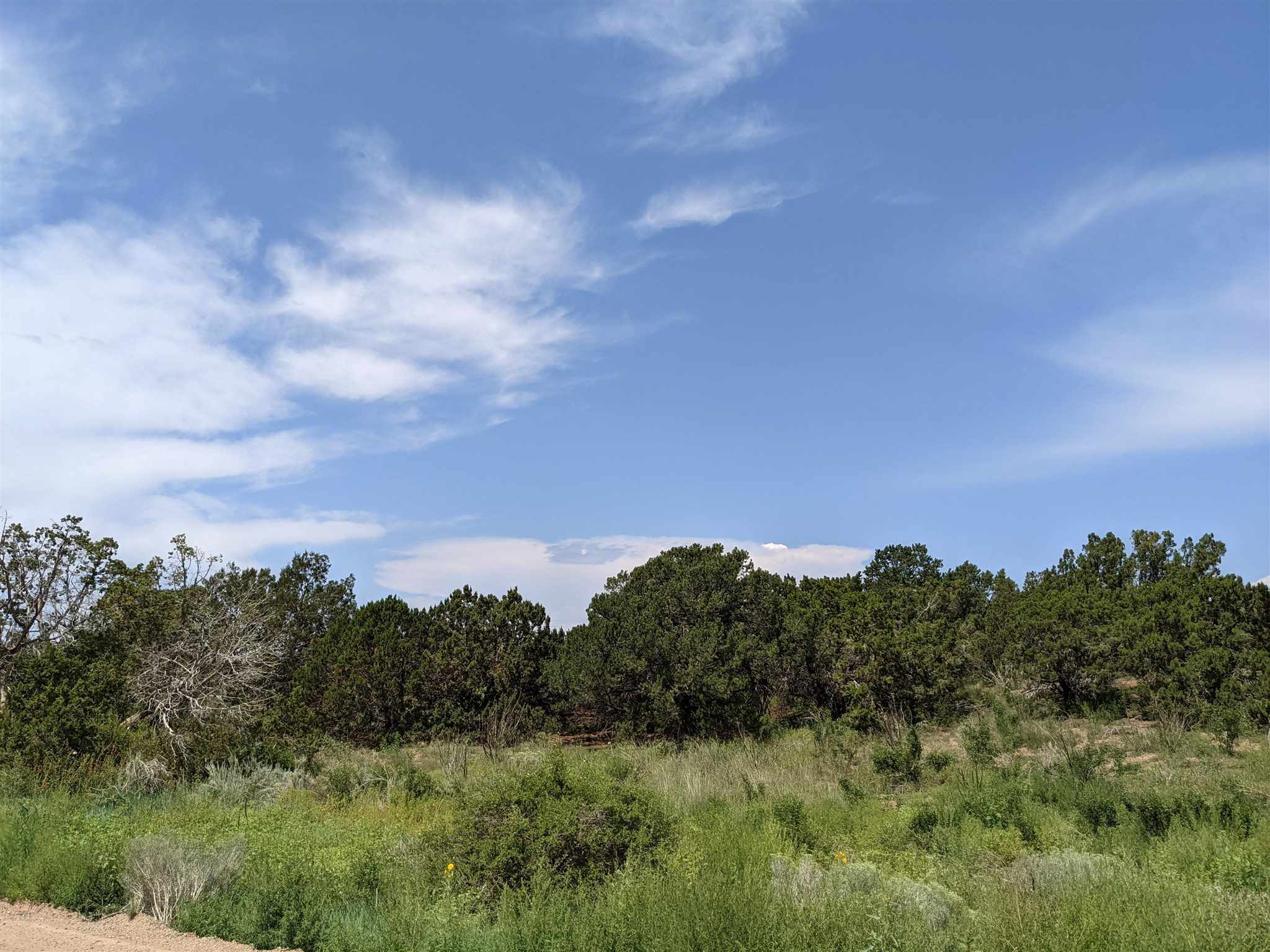 12 Camino Valle, Lamy NM 87508 - Photo 2