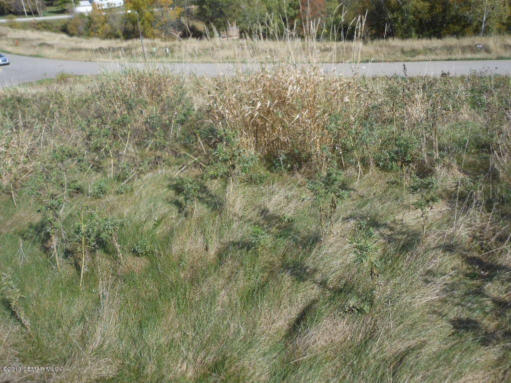 63 Buck Ridge Drive, Winona MN 55987 - Photo 1