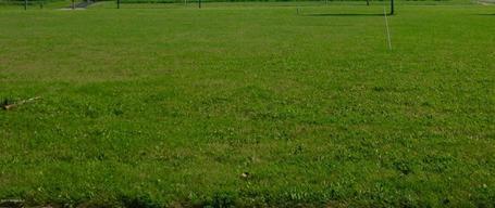 202 Whitetail Lane Kenyon