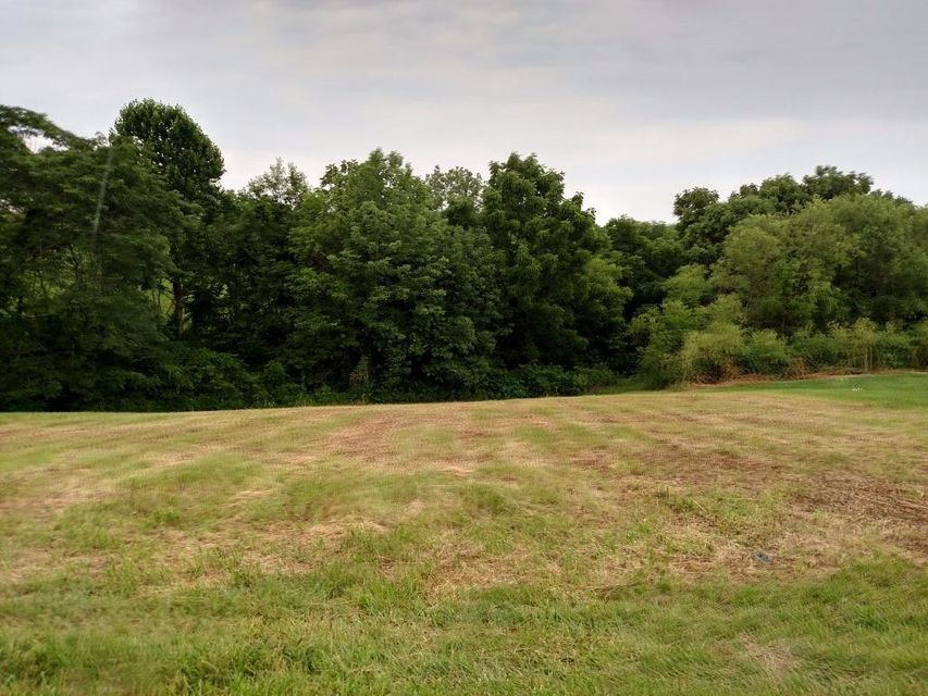 0 Hogg Ridge Rd # Lot 3, Williamstown KY 41097 - Photo 1