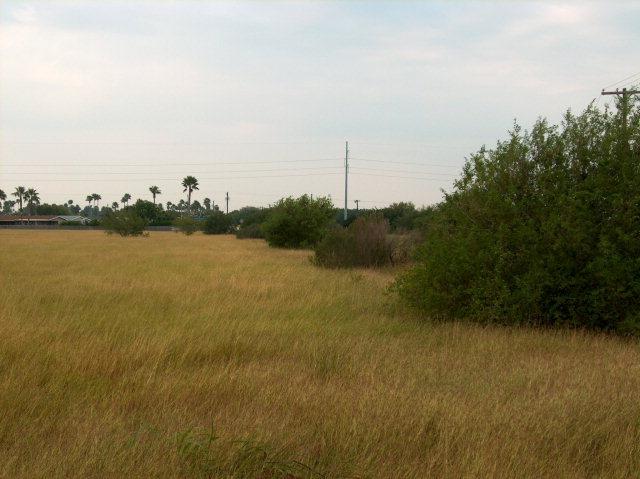 0 Fm 509, San Benito TX 78586 - Photo 2