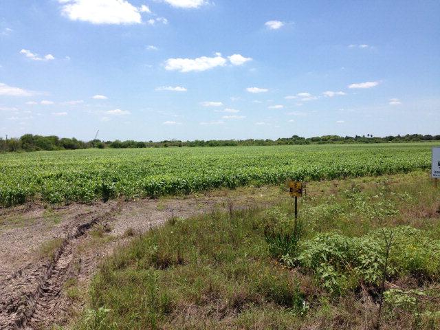 0 Us Highway 281, Brownsville TX 78520 - Photo 2