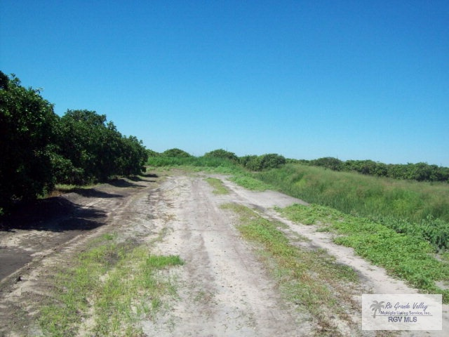Tbd N White Ranch Rd., La Feria TX 78559 - Photo 2