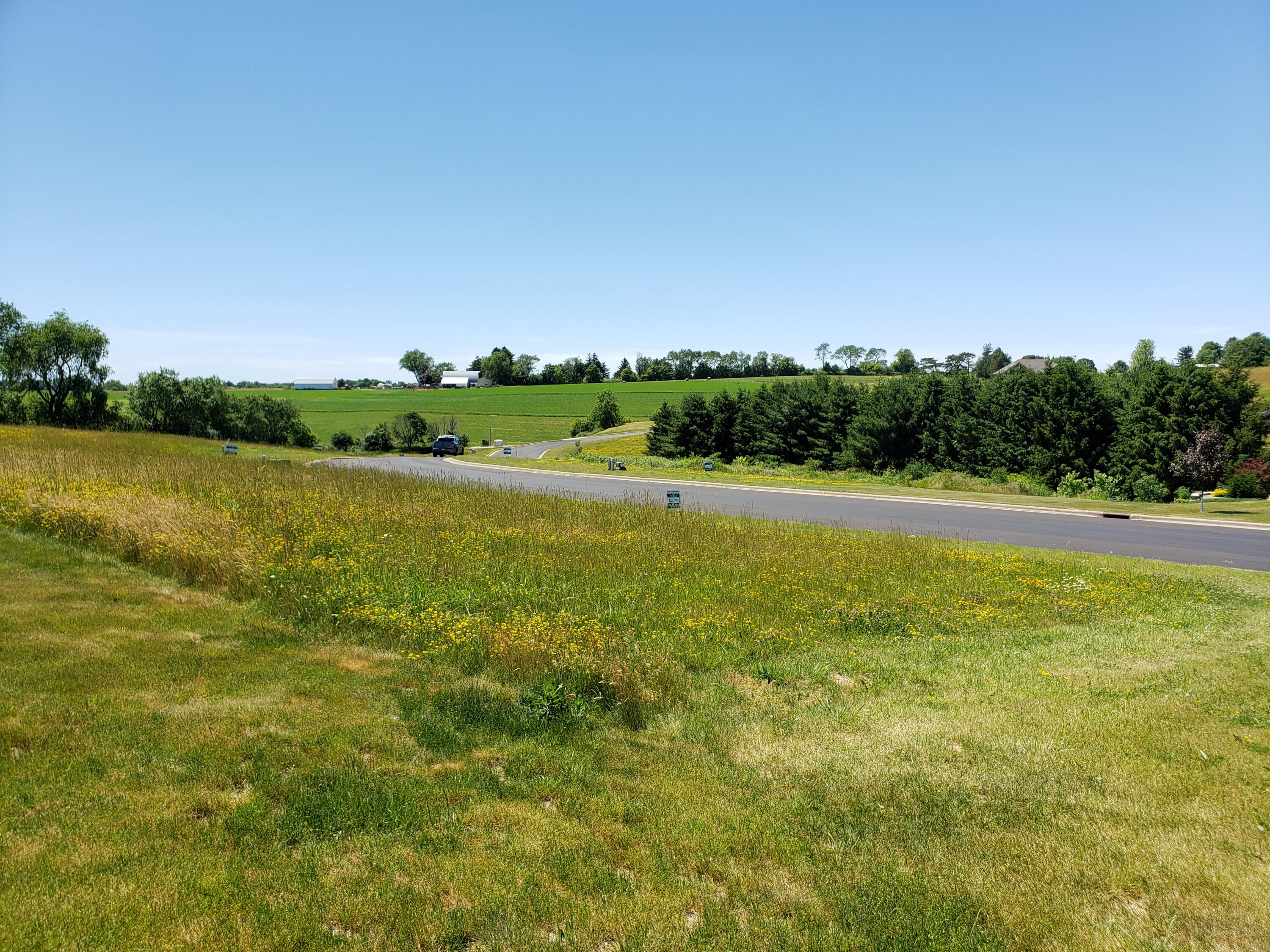 Lot 19 16th Fairway Dr, Viroqua WI 54665 - Photo 2
