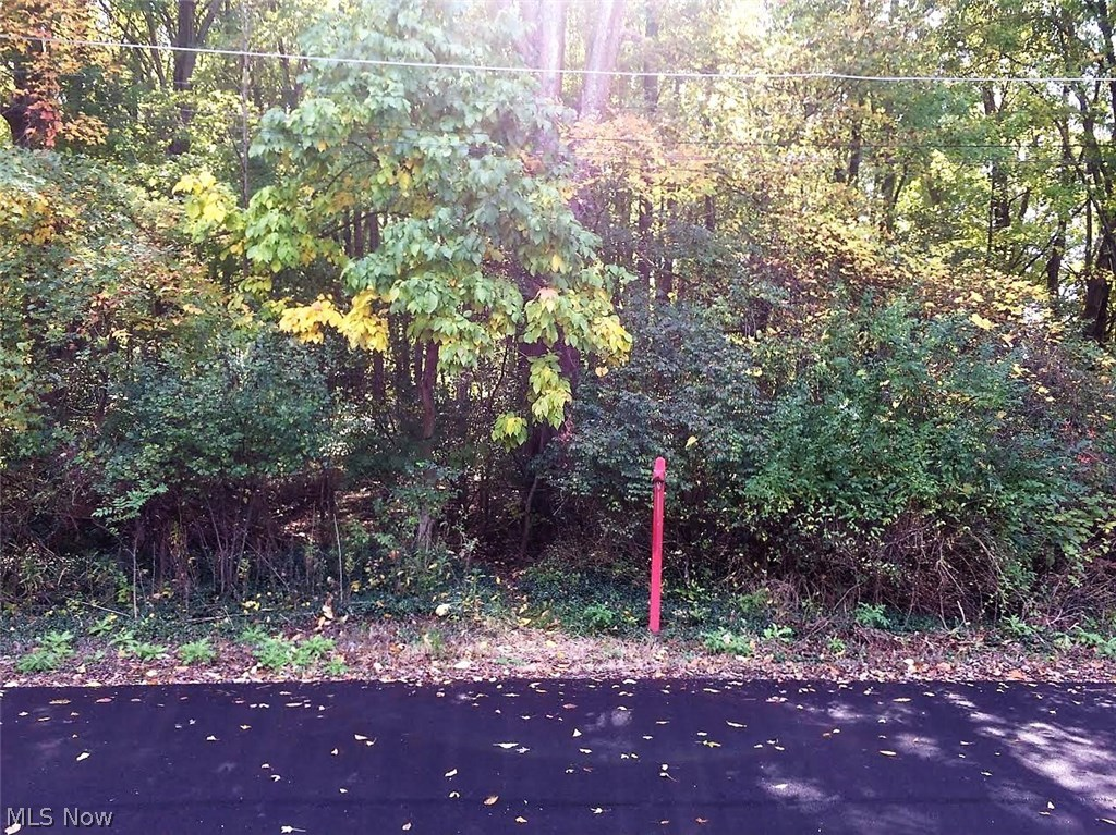Wilson Dr, Olmsted Falls OH 44138 - Photo 1