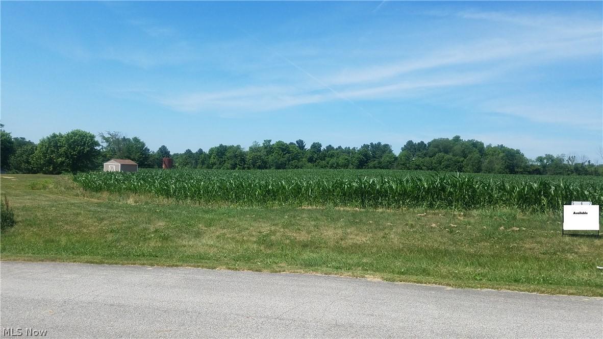 Wheeler Road # 007, Garrettsville OH 44231