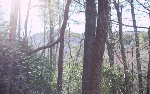 #109 Big Pine Drive, Hiawassee GA 30546 - Photo 1