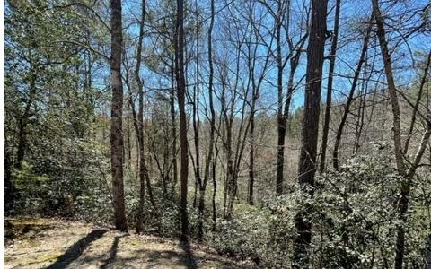 Lot 6 Willow Ridge, Warne NC 28909 - Photo 1