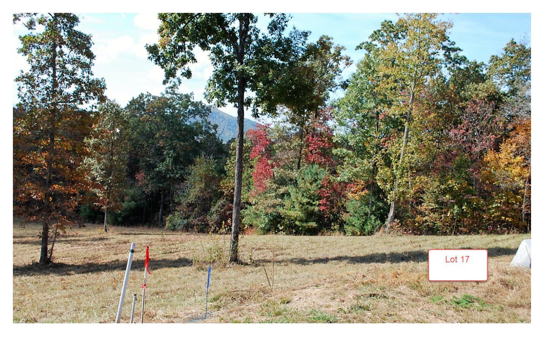 Lt17 Jack Groves Lane, Hayesville NC 28904