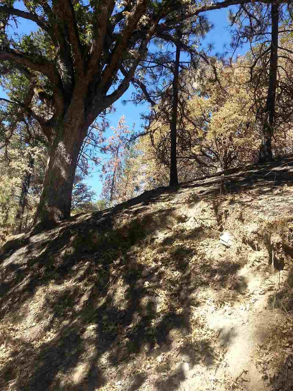 Middle Creek Ranch Road, Klamath River CA 96050 - Photo 1