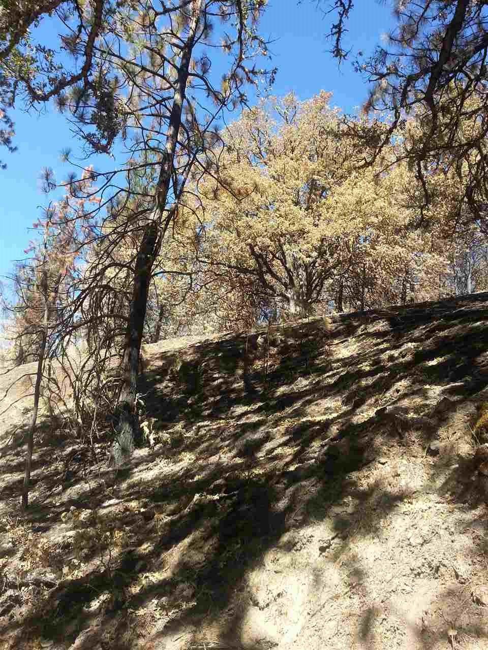 Middle Creek Ranch Road, Klamath River CA 96050 - Photo 2