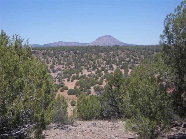 86 N Quibits Creel Trail, Ash Fork AZ 86320 - Photo 1