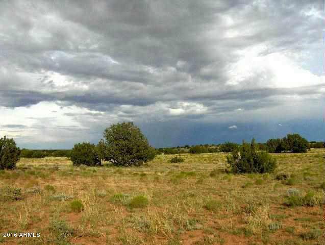 321 Chevelon Canyon Ranch --, Overgaard AZ 85933 - Photo 1