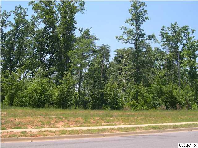 9830 Lake Side Drive # 60, Tuscaloosa AL 35406 - Photo 1