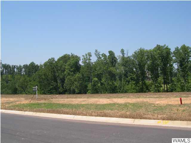 1520 Shea Harbor Drive # 65, Tuscaloosa AL 35406