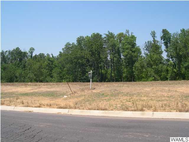 1500 Shea Harbor Drive # 66, Tuscaloosa AL 35406 - Photo 1