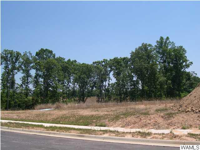 1485 Shea Harbor Drive # 75, Tuscaloosa AL 35406 - Photo 1