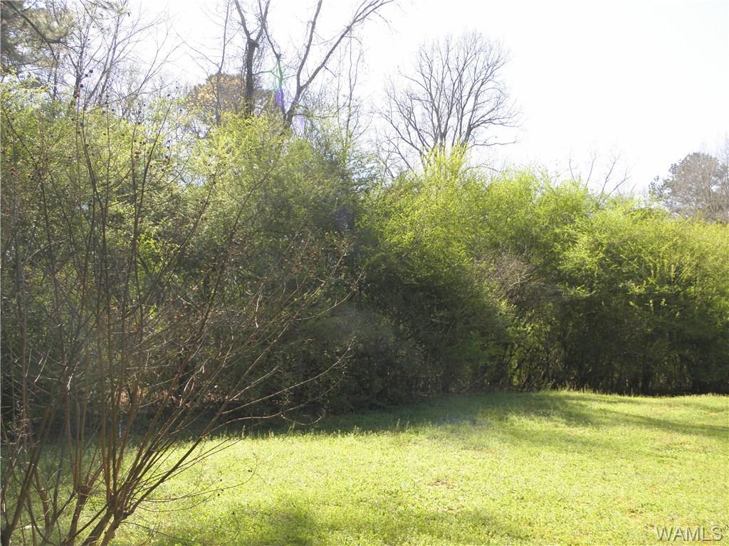 0000 Daffron Road, Cottondale AL 35453 - Photo 2