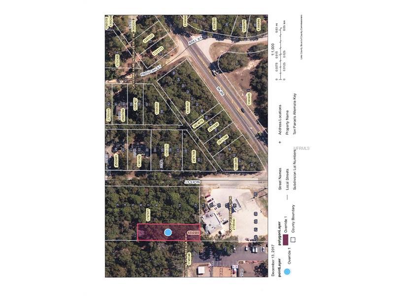 Niles Street, Mount Plymouth FL 32776 - Photo 2