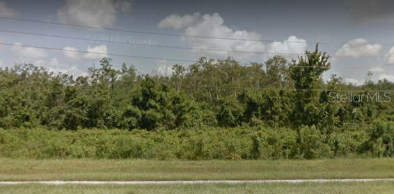 17783 W Space Coast Parkway, Winter Garden FL 34787 - Photo 1