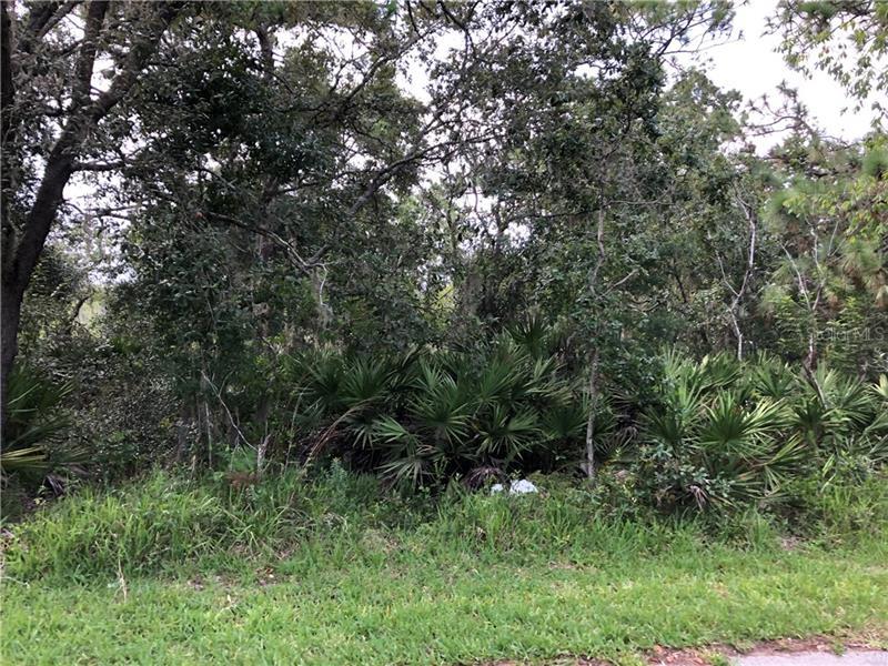 14913 Arrena Road, Winter Garden FL 34787 - Photo 2