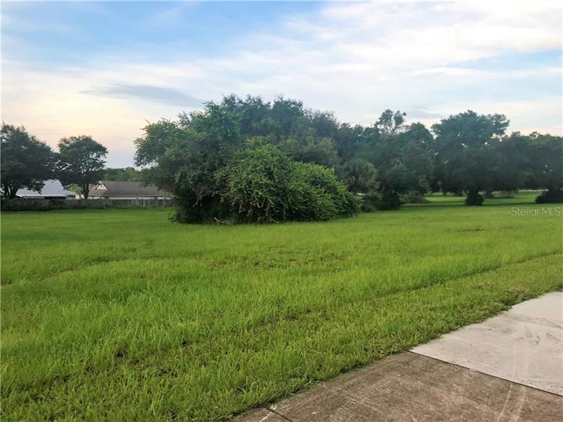 County Road 448, Tavares FL 32778 - Photo 1