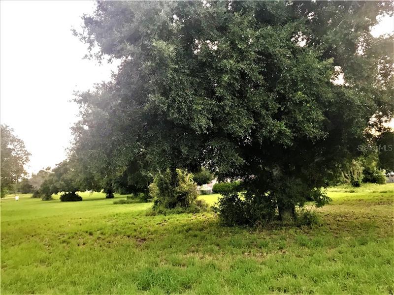 County Road 448, Tavares FL 32778 - Photo 2