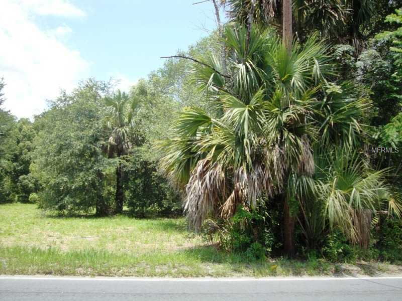 Sr 46/ 435 Road, Mt Plymouth FL 32776