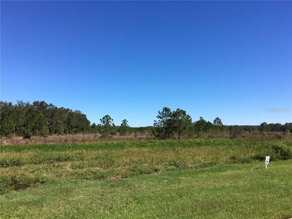 455 Long And Winding Road, Groveland FL 34737 - Photo 2