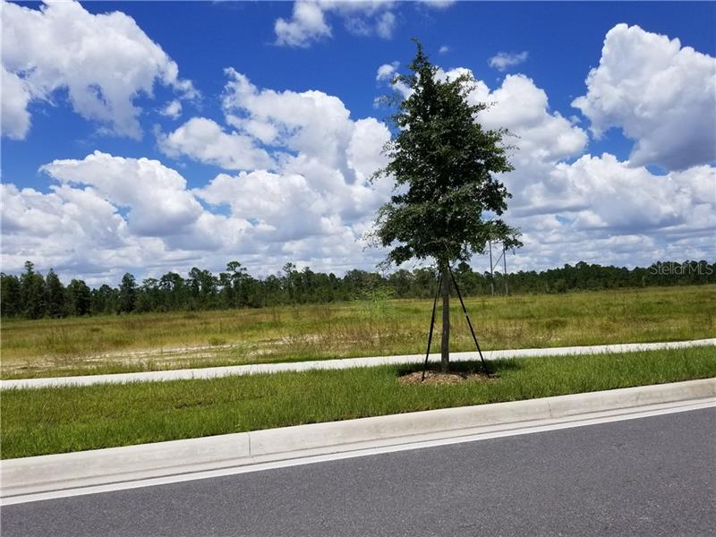 S Apopka Vineland, Orlando FL 32821 - Photo 1