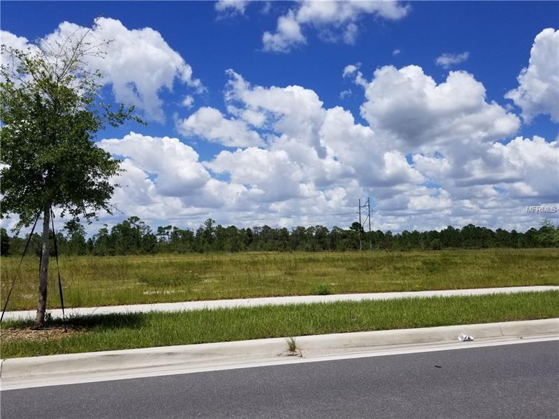 Apopka Vineland Road, Orlando FL 32821