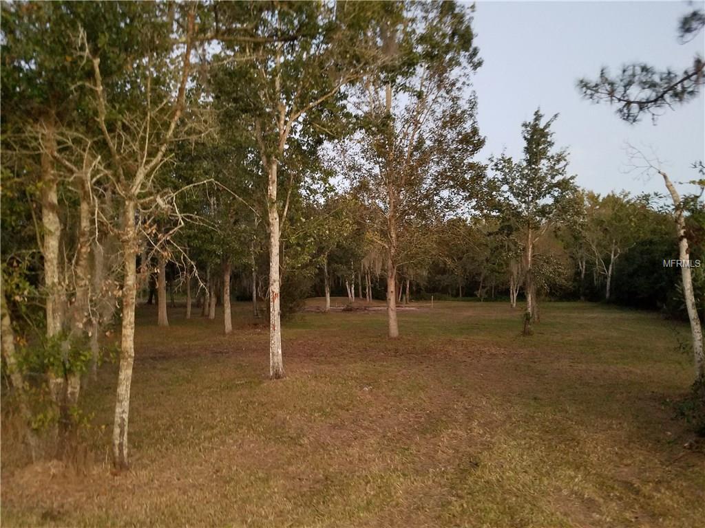 7834 Boyette Road, Wesley Chapel FL 33545 - Photo 1