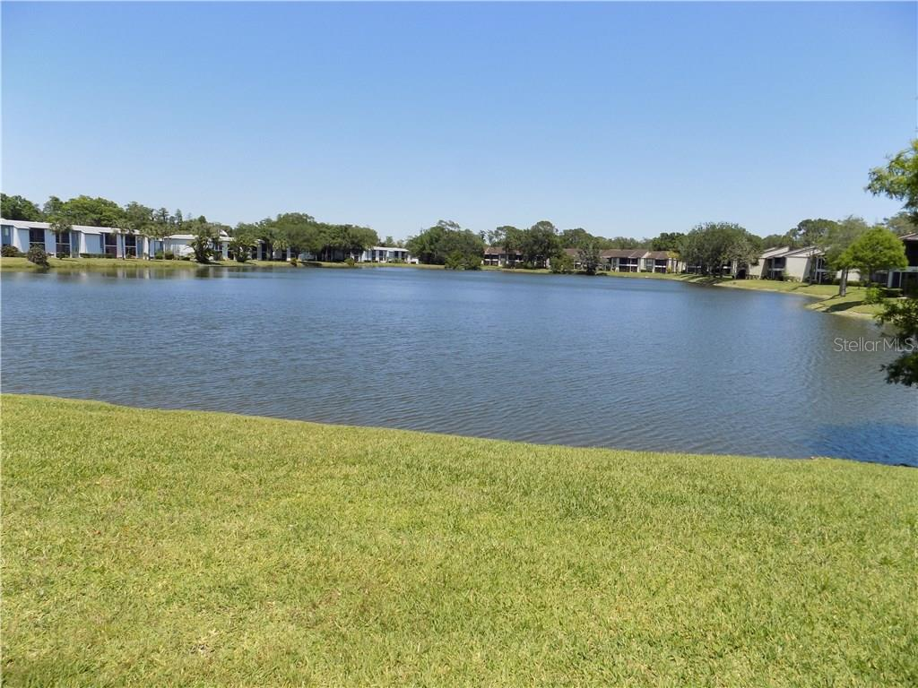 303 Woodlake Wynde #303, Oldsmar FL 34677 - Photo 2