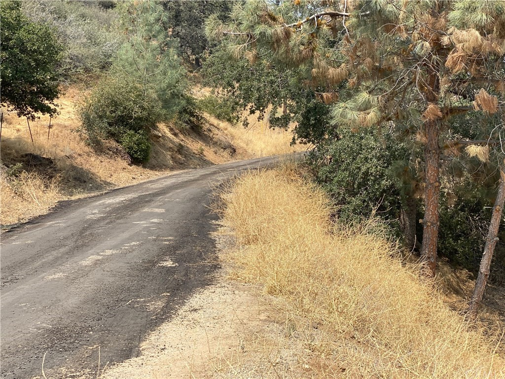 0 Land, Caliente CA 93518 - Photo 1