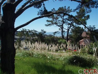 1970 Emmons Road, Cambria CA 93428 - Photo 2