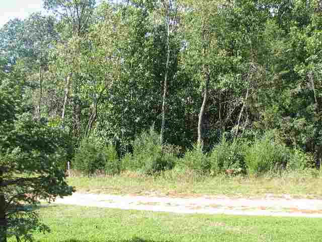 Lot 3 Csm 217, Mecan WI 53949 - Photo 1