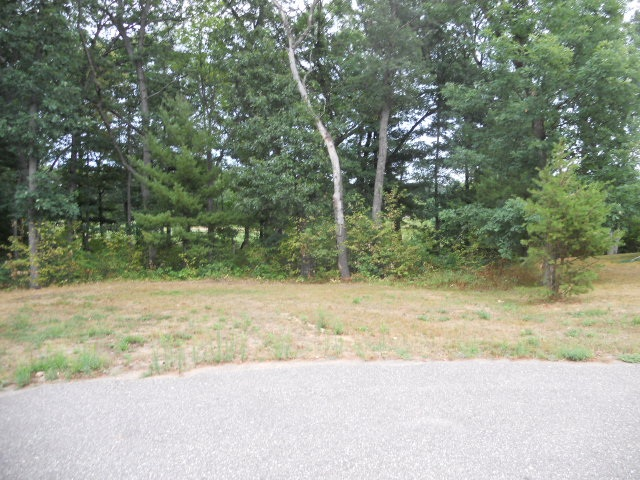 326 Dogwood Ln, Lake Delton WI 53940 - Photo 2
