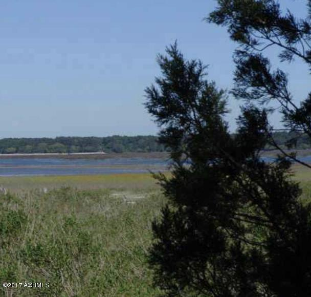 5 Woodstork Watch, Okatie SC 29909 - Photo 1