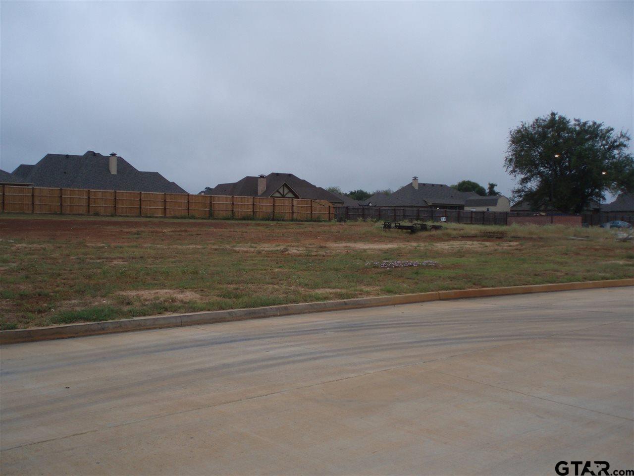 002 S Doctor M Roper Parkway (us Hwy 69), Bullard TX 75757 - Photo 2