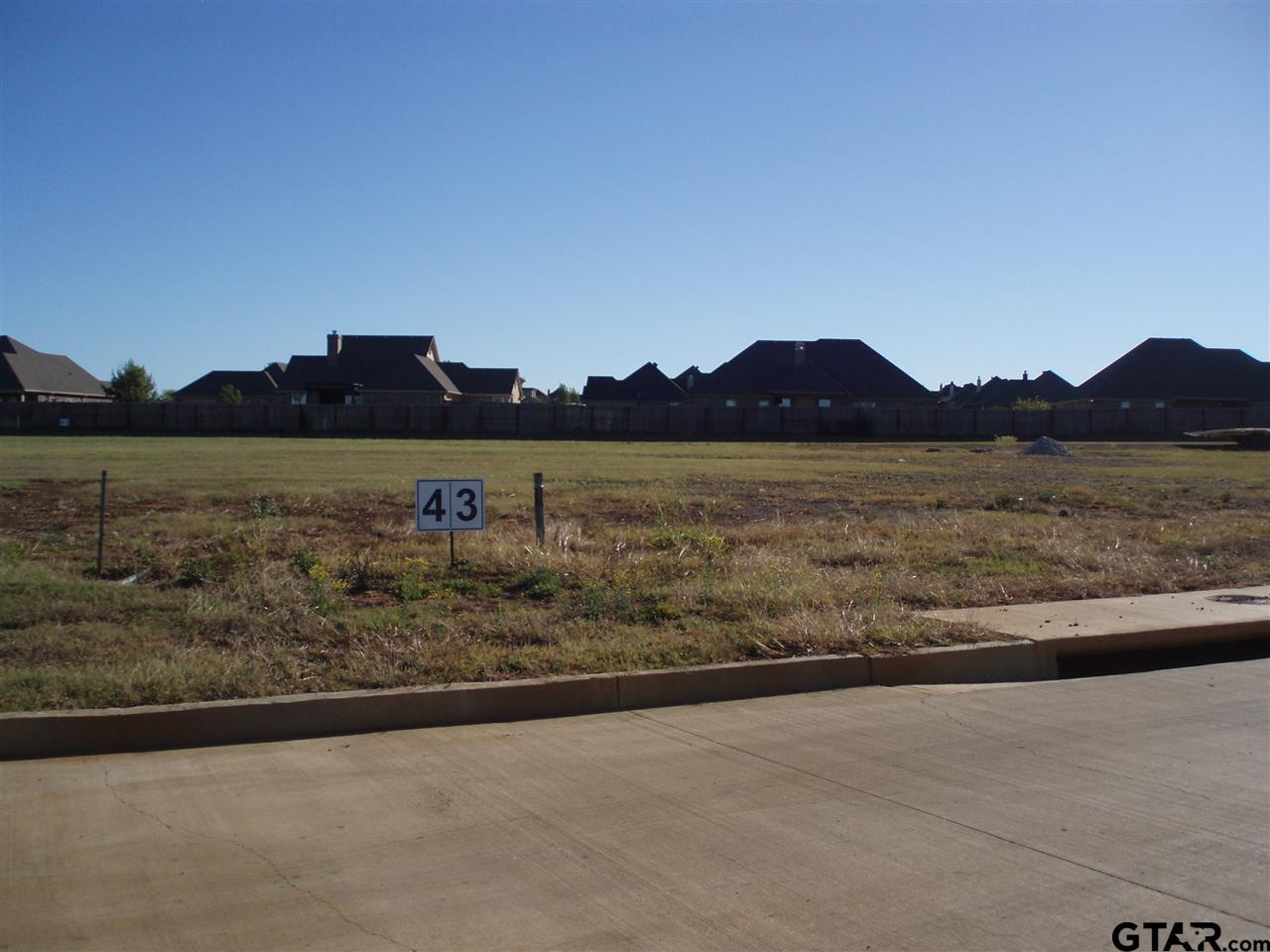 003 S Doctor M Roper Parkway (us Hwy 69), Bullard TX 75757 - Photo 2