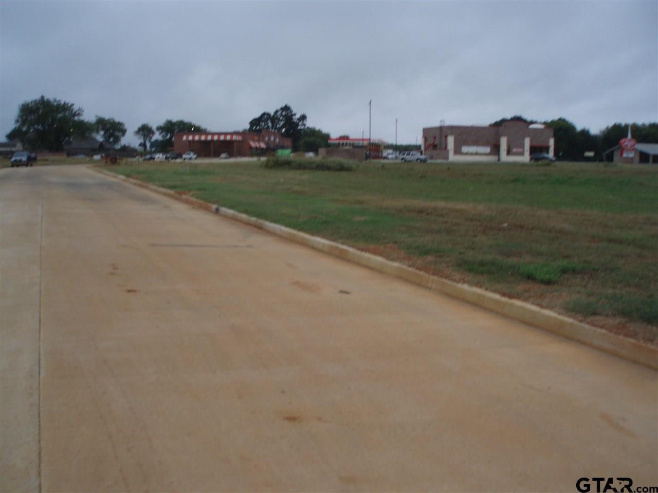 006 S Doctor M Roper Parkway (us Hwy 69), Bullard TX 75757 - Photo 2