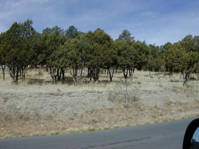 - - Sun Valley Road, Alto NM 88312 - Photo 1