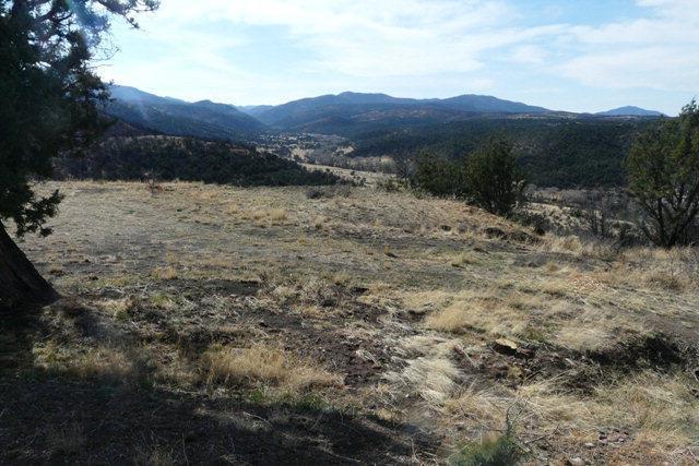 L17 Sandesta Drive, Alto NM 88312 - Photo 1