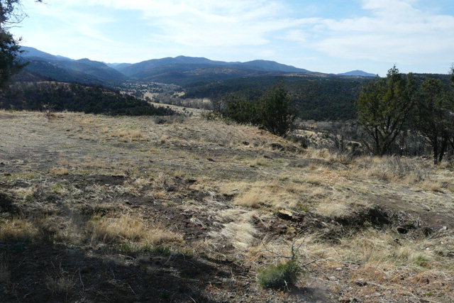 L17 Sandesta Drive, Alto NM 88312 - Photo 2