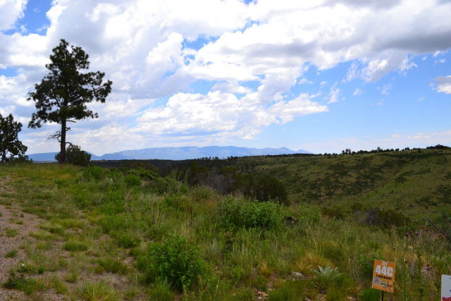 44c Lee Trevino Ct # 3, Alto NM 88312 - Photo 2